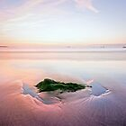 Beach Before Sunrise by Andrew Hocking