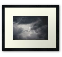 Crow flying in stormy sky Framed Print