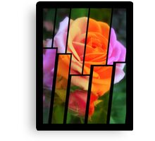 Pink Roses in Anzures 2 Tinted 2 Canvas Print