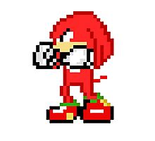 Pixel Knuckles  Photographic Print