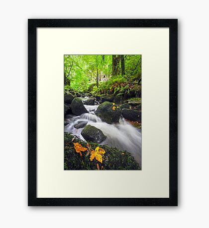 Early Autumnal Brook Framed Print