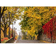 autumn cityscape after rain, with yellowed trees and street lamps Photographic Print