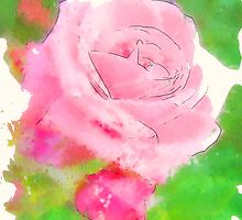 Pink Roses in Anzures 2 Serene by Christopher Johnson