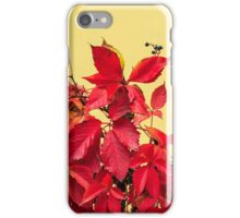 red foliage  on a metal fence iPhone Case/Skin