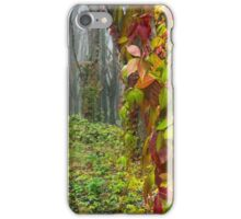 red ivy on trees iPhone Case/Skin