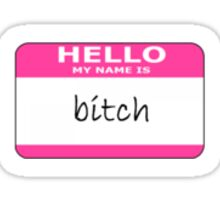 hello my name is bitch Sticker