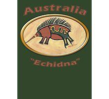 Echidna-Australia Photographic Print