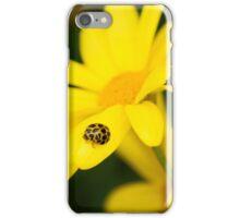 Ladybug iPhone Case/Skin