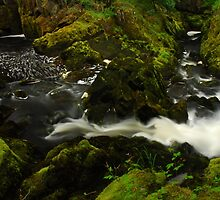 Stream on the Ingleton trail by Crimmy