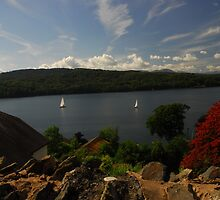 Lake Windermere from the road by Crimmy