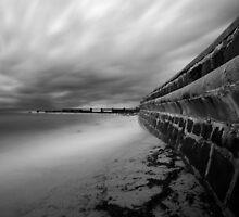 Ocean Defense by lawsphotography