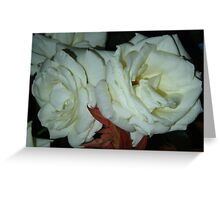 Olde Roses Greeting Card