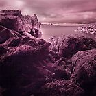 Infra Red Seaweed Rock , Broad Haven, Pembrokeshire by rennaisance