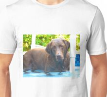 A very Lab summer Unisex T-Shirt