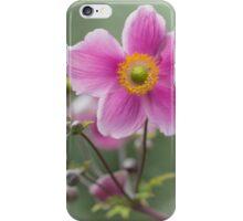 Pink Japanese Anemone iPhone Case/Skin
