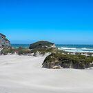 Windy day at Archway Islands Beach by DebbyScott