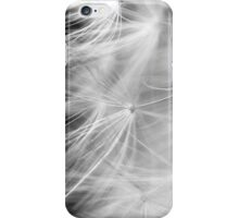Dandelion #3 iPhone Case/Skin