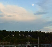 The Super Moon is Upon Us by Karen Jayne Yousse
