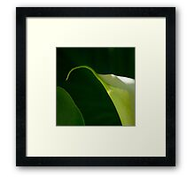 By Nature's Design Framed Print