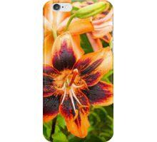 Lilycrest Gardens Showcase 2014 - I iPhone Case/Skin