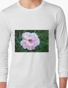 Beautiful gentle pink roses background Long Sleeve T-Shirt