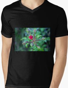 Beautiful gentle pink roses background Mens V-Neck T-Shirt