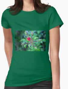 Beautiful gentle pink roses background Womens Fitted T-Shirt