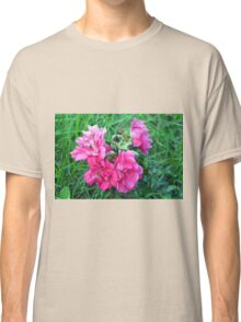 Beautiful gentle pink roses background Classic T-Shirt