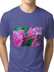 Beautiful gentle pink roses background Tri-blend T-Shirt