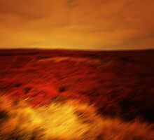 WHISPERS BLOWING ON THE MOORS by leonie7