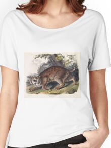 John James Audubon - Lynx rufus  Guldenstaed  Common American Wild Cat  3 4 Natural Size  Male 1842  Women's Relaxed Fit T-Shirt