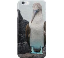 Blue Footed Boobie 1 - Galapagos Islands 2014 iPhone Case/Skin