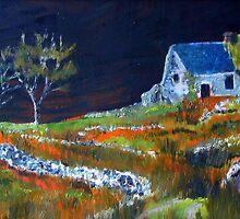 Little House in Ireland by ienemien