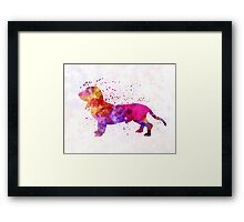 Blue Gascony Basset in watercolor Framed Print