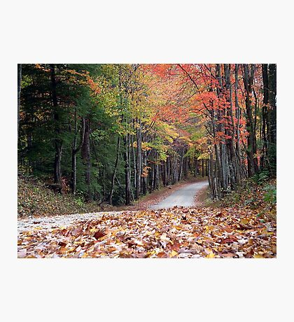Poga Autumn Photographic Print