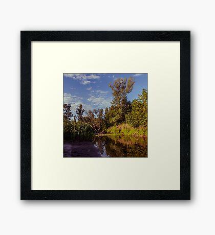 Morning Creek Framed Print