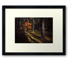 Orange alien Framed Print
