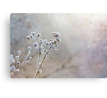 Winter Snow Scene Metal Print
