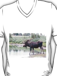Thirsty moose a Thursday morning T-Shirt