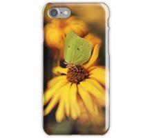 In my garden iPhone Case/Skin
