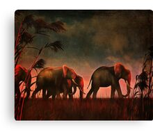 Elephants walking together Canvas Print