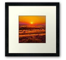 Hills Of Gold Framed Print