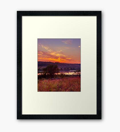 Red Grass Framed Print