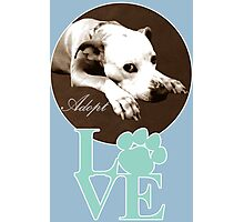 Adopt and Love Photographic Print