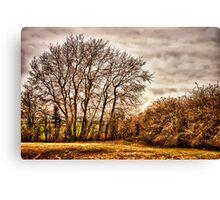 Countryside Ramblings Canvas Print