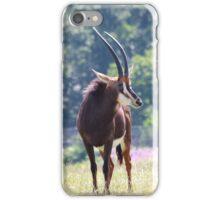 Sable Antelope iPhone Case/Skin