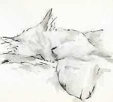 The Sleeping Cat by Artidt