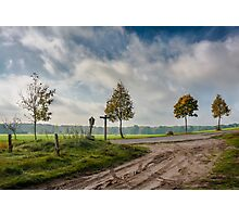Four on the crossroads Photographic Print
