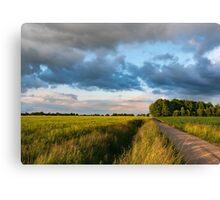 Backroad between the fields Canvas Print