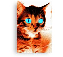 Cartoonish Kitten Canvas Print